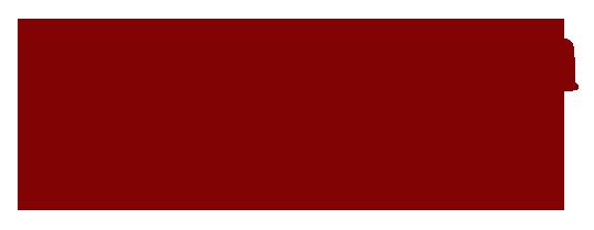 Novias de Princesa Logo