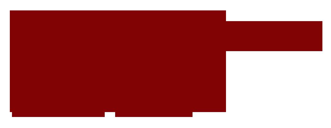 Novias de Princesa Retina Logo
